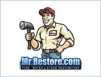 mr restore copy