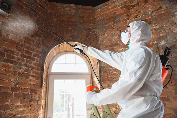 Structural Cleaning